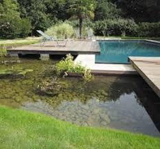 Backyard Bassin - 1272 best bassin et piscine images on pinterest backyard ideas
