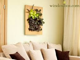 water collector for indoor living wall planter
