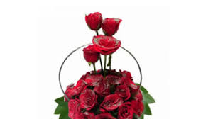 Same Day Delivery Gifts Valentine Day Flowers And Cake Same Day Delivery Gifts Surat Youtube