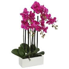 orchid flowers mercer41 artificial orchid flowers in vase reviews wayfair