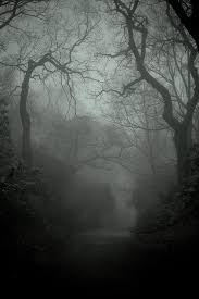 spooky backgrounds 59 best spooky photography images on pinterest photography