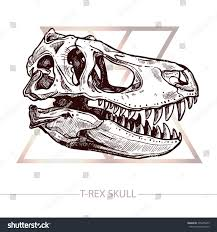 coloring page extraordinary t rex skull drawing by cutiepieamy
