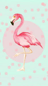 pink martini clip art 79 best flamingo clip art images on pinterest pink flamingos