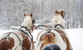 mount oregon sleigh rides alltrips
