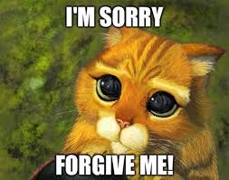 I Am Sorry Meme Memes - cute funny i m sorry pictures with sayings http ddquotes com cute