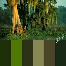 swamp color palette colour pinterest color palettes colors