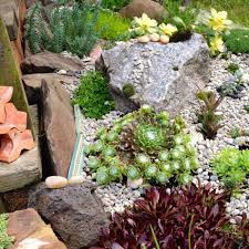 landscaping decomposed granite landscaping ideas rock front
