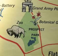 where the buffalo roam backyard and beyond