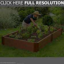 raised garden bed ideas cheap home outdoor decoration