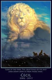lion king u0027 cecil tribute drawn disney movie animator