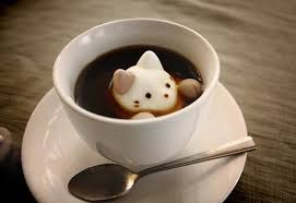 cute marshmallow cats float dissolve coffee cups