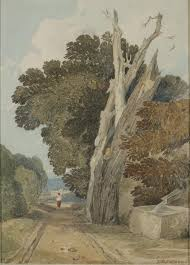 file chestnut tree struck by lightning by sell cotman