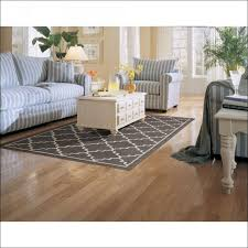Braided Kitchen Rug Living Room Awesome Wayfair Kitchen Rugs Wayfair Braided Rugs