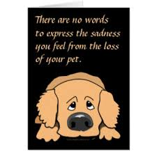 the loss of a pet dog pet sympathy cards invitations zazzle co nz