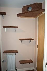 best 25 diy cat shelves ideas on pinterest cat shelves cat