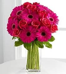 dc flower delivery gorgeous gerber daisies s day flower delivery in dc in