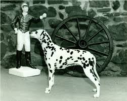 dalmatian history u0026 training temperament