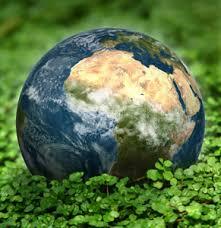 Environmental Engineering Assignment Help assignment help code     Assignmenthelp net