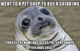 Doge Dog Meme - one doge please