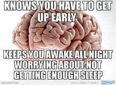 Brain Meme Generator - scumbag brain need to study for tomorrow s quiz thinks you should