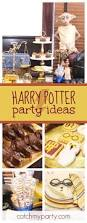 Harry Potter Halloween Party Ideas by 160 Best Harry Potter Party Ideas Images On Pinterest Harry