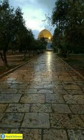 13 best palestine images on pinterest jerusalem israel