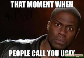Meme Ugly - that moment when people call you ugly meme kevin hart the hell