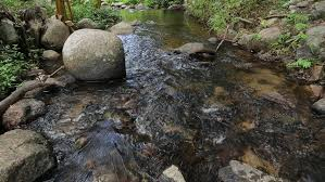 River Bed Definition Transparent And Motion Blur Water In River With Stone Full High