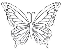 coloring pages of butterflies printable to sweet print page