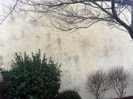 Clean Wall Stains by Stains On Exterior Stucco Should Be Cleaned Not Painted Over