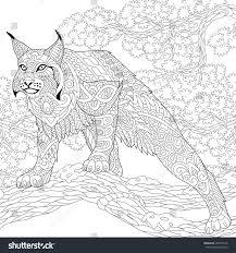 stylized hunting wildcat lynx bobcat ready stock vector 496979128