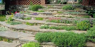 Bush Rock Garden Edging 6 Best Rock Garden Ideas Yard Landscaping With Rocks