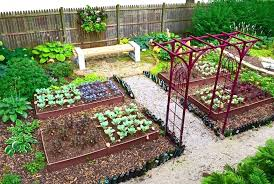 How To Plan A Garden Layout How To Layout A Vegetable Garden Photo 1 Of Backyard