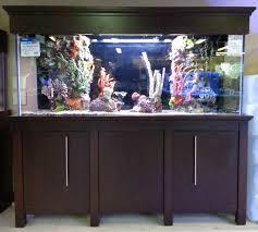 best black friday deals saltwater supplies the fish gallery