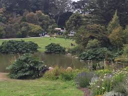 Flower Piano In The San Francisco Botanical Garden U2013 Simple Cherishes