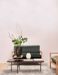 8 of the best indoor plants to make a statement in your home