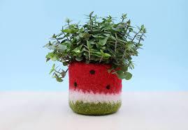 Plant Vase Felt Succulent Planter Cactus Vase Watermelon Vase