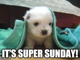 Puppy Memes - cute puppy meme generator imgflip