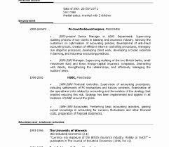 amazing resume templates free resume templates for word amazing creative template
