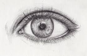 eye sketch images reverse search