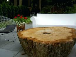 tree trunk end table tree trunk coffee table for sale with glass top stump end tables diy