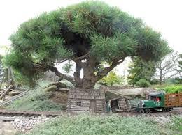 miniature trees garden railways magazine