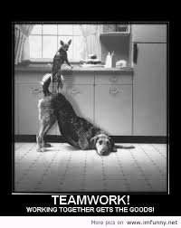 Team Work Meme - discover how your differences bring you together smart teamwork