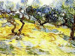 olive trees bright blue sky vincent van gogh painted in