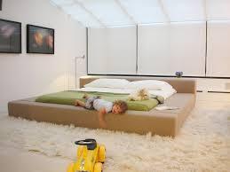 Modern Canopy Bed Modern Canopy Bed Bedroom Scandinavian With Modern Art White Rug