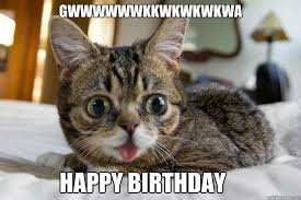 Lil Bub Meme - gwwwwwwkkwkwkwkwa happy birthday lil bub birthday quickmeme