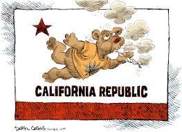 California Meme - california bear weed memes weed memes