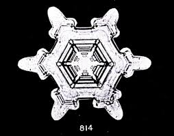 bentley logo black and white file bentley snowflake 814 jpg wikimedia commons