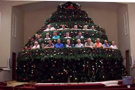 christmas living christmas tree virginia trees in pots bend