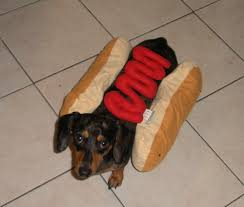 Halloween Costumes Wiener Dogs Dog Ketchup Dog Halloween Costume Shipping